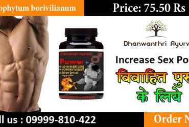 Dhanwanthri Ayurveda Power+ Medicine